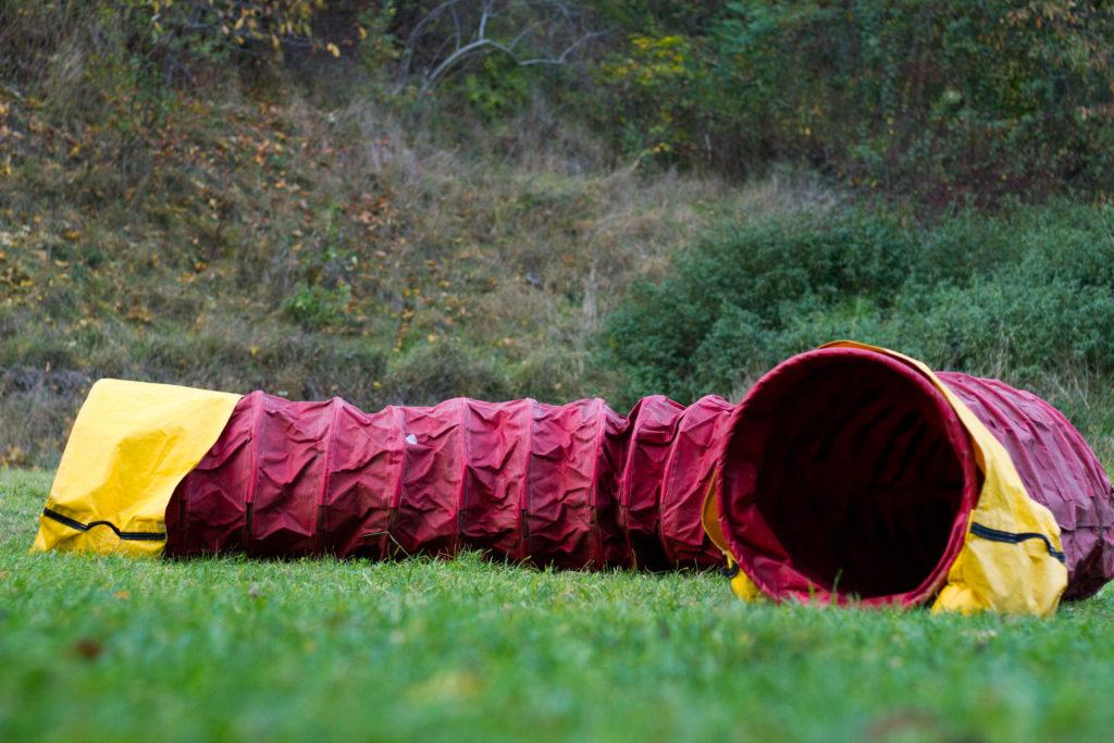 tunel zapni psa